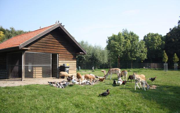 Dierenweide Van Anrooylaan (wijk Zuilenstein)